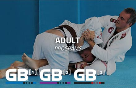 Gracie Barra Irvine Adult Programs